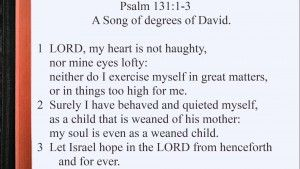 Today's Daily Bible Reading is from Psalm 131:1-3. Psalm 131 is a song of degrees of David. This is one of the shortest Psalms with only three verses. David humbles himself before the LORD saying his heart is not arrogant or his eyes prideful, nor does he exalt himself in matters that are too great for him.