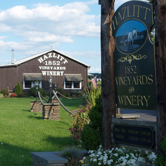 Hazlitt Winery - A personal favorite! Home of Red Cat ❤️🐾🍷