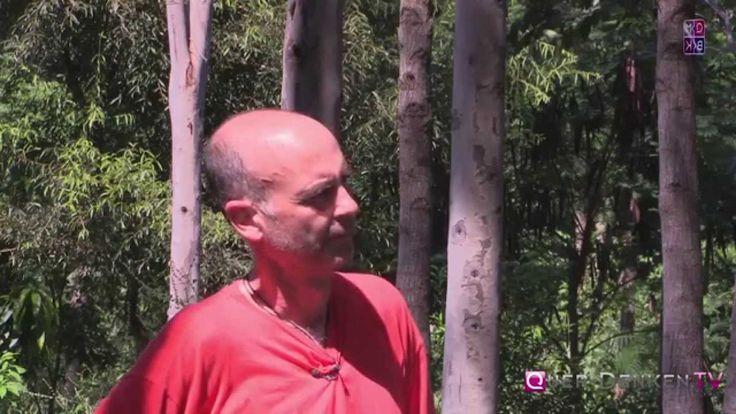 TheParentTreeFarm in Paraguay: einzigartige ökologische Aufforstung zerstörten Regenwaldes (Teil 1) Moringa-Samen kaufen