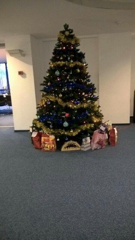 Oh , Christmas tree!