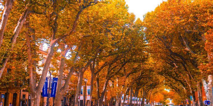 Via Aurelia [French Riviera]: GR653A: Menton - Frejus - Aix-En-Provence - Arles