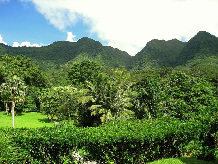 The best things to see and do on Oahu: Explore Kualoa Ranch