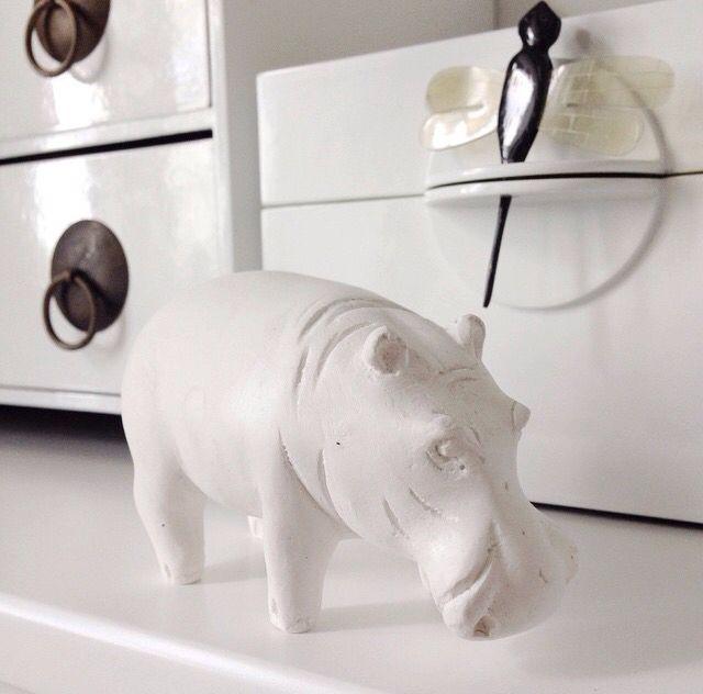 Hippo Oi Soi Oi
