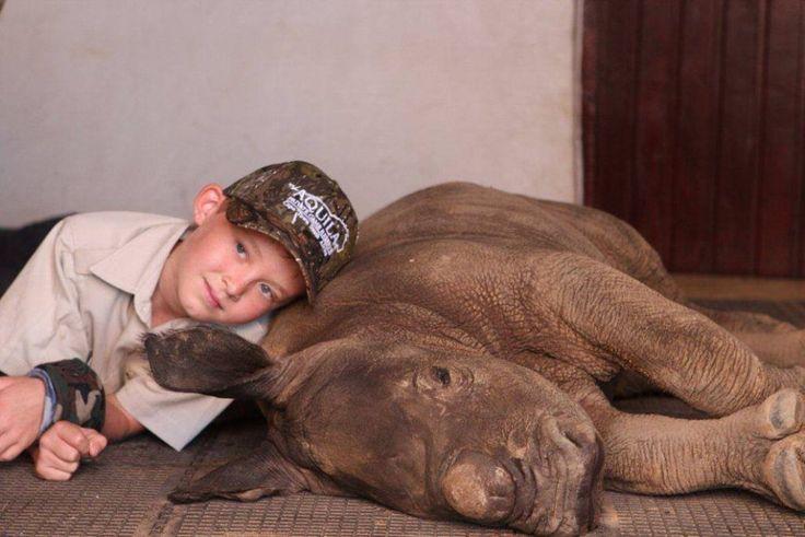 Un bimbo e la sua tenacia al servizio di un piccolo orfano di rinoceronte. Durante la notte di Capodanno, nei pressi di Città del Capo, in Sudafrica, un