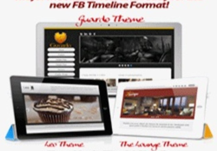 WOW! give you the new fb timeline WP Theme on fiverr.com