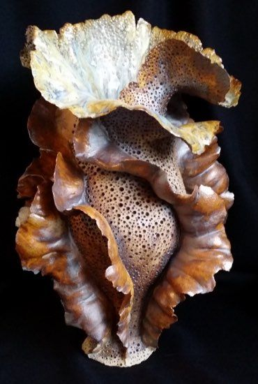 Ceramics by Pat Short at Studiopottery.co.uk - 2015 ~ looks like a piece of giant burnt popcorn!