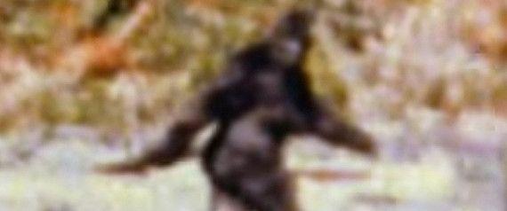 'Finding Bigfoot' Team Still Can't Find Bigfoot
