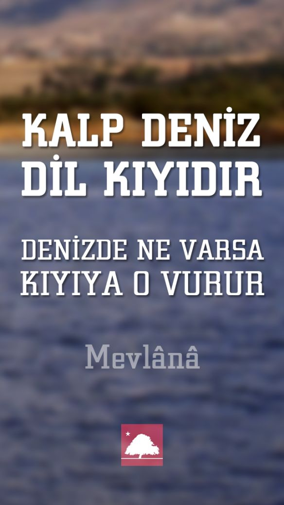 Mevlana : Kalp deniz, dil kıyıdır. - Anadolu Çınarları poster