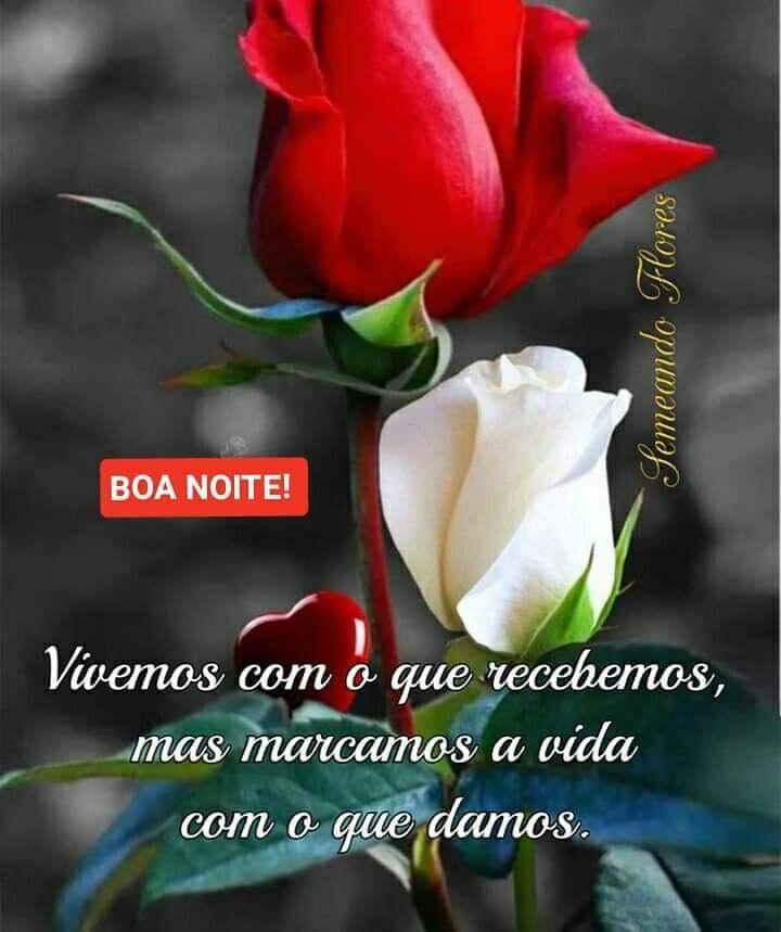 Pin De Lenira Carvalho Em Rosas Vermelhas Boa Noite Rosa Flor