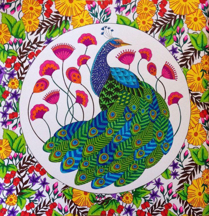 Peacock From Animal Kingdom Coloured Using Stabilo 88