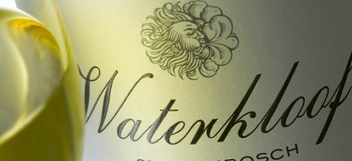 Waterkloof Introduces its flagship Sauvignon Blanc