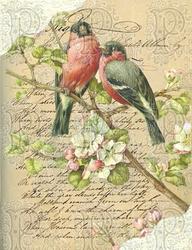 Robins! Want this for my kids! The one I have and the one I will have someday! Robins symbolize spring and rebirth!