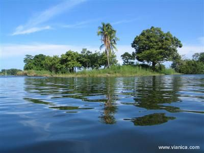Lake Cocibolca (also known as Lake Nicaragua), is the 10th largest fresh-water lake on earth and is inhabited by Bull Sharks, informally named the Nicaragua Shark.