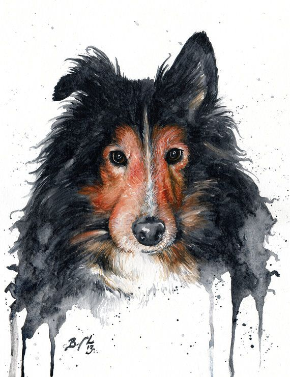 2147 Best Images About Drawing Dogs On Pinterest Oil On