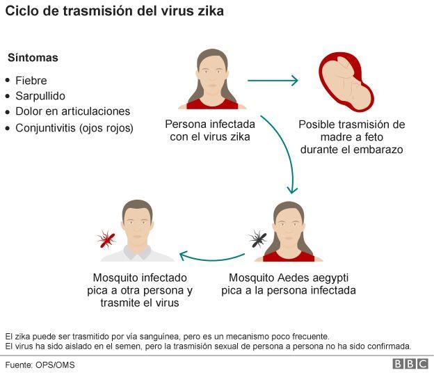 Una enfermedad ocasionada por un mosquito y similar al dengue se ha detectado por primera vez la región, ¿De dónde viene, cuáles son los síntomas y cómo se puede prevenir?
