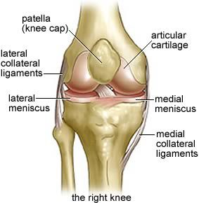 Great website all about knees and exercises to do to avoid knee problems (or to avoid anymore, in my case!).