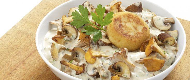 Für die Taler die Kartoffeln unter fließend kaltem Wasser abspülen, in einen Topf geben, knapp mit Wasser bedecken und zugedeckt zum Kochen bringen. Ca. 20 Minuten gar kochen. Kartoffeln abgießen und kurz abkühlen lassen. In der Zwischenzeit Pilze putzen, säubern und in mundgerechte Stücke oder Scheiben schneiden. Zwiebeln abziehen und fein würfeln. Öl in einer Pfanne erhitzen und Zwiebeln und Pilze und unter Wenden anbraten. Mit Weißwein ablöschen und bei starker Hitze einkochen…