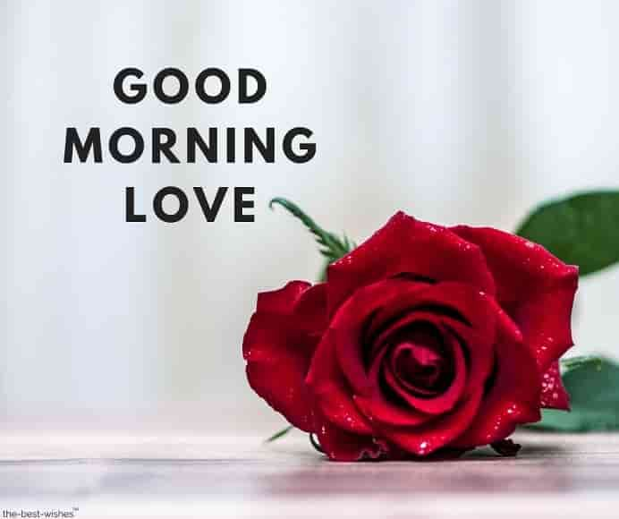 Romantic Good Morning Messages For Wife Best Collection Romantic Good Morning Messages Good Morning Messages Good Morning Love