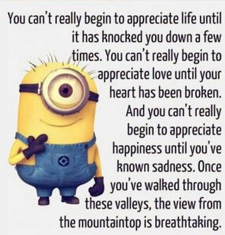 Funny minions images with captions (01:08:34 PM, Thursday 15, October 2015 PDT) – 10 pics