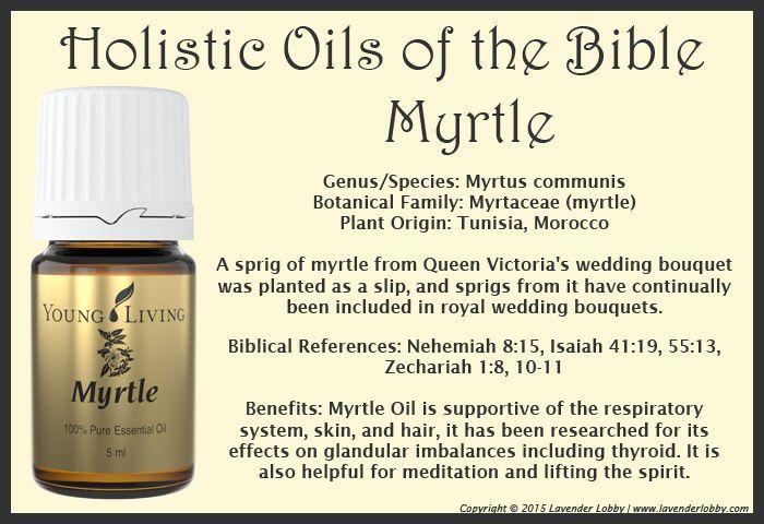 Young Living Essential Oils: Myrtle Holistic Oils of the Bible Twelve Oils of Ancient Scripture:
