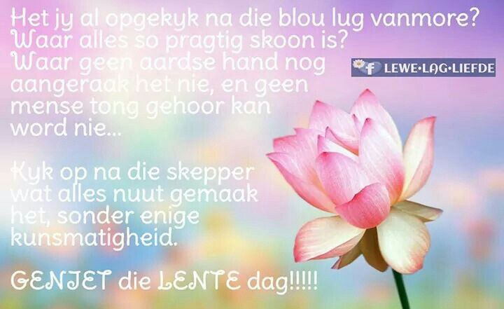 Lente Dag