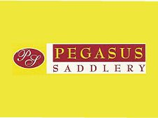Pegasus Saddlery stock Canterflex, Cantercal & Motipid Pegasus Saddlery 3/20 North Shore Drive Burpengary, QLD 4505 07 3888 2800