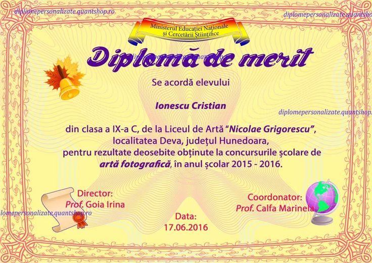 D303-Diploma-de-merit-discipline-personalizata-liceu-Model.jpg (800×566)