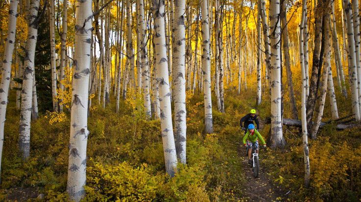 The 10 Best Spots to Catch Fall Colors   Outside Online