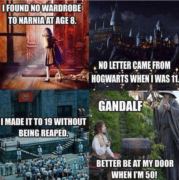 Narnia Hogwarts Harry Potter The Hunger Games Gandalf Lord of The Rings funny
