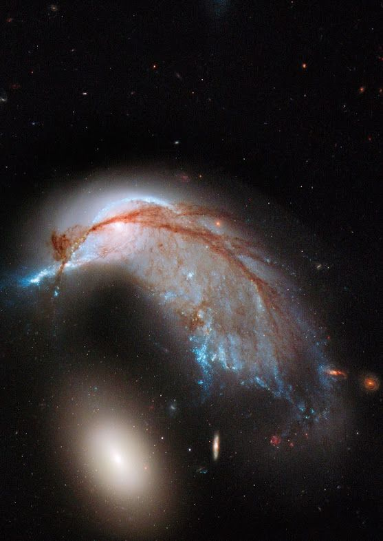 This striking NASA Hubble Space Telescope image, which shows what looks like the profile of a celestial bird, belies the fact that close encounters between galaxies are a messy business. This interacting galaxy duo is collectively called Arp 142. The pair contains the disturbed, star-forming spiral galaxy NGC 2936, along with its elliptical companion, NGC 2937 at lower left.