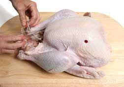 Preparing a Turkey - Turkey Preparation