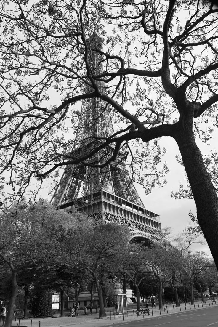 Paris in the spring.Photoartists.ca All images are available for purchase. We print on photographic paper or watercolour paper. We also print on canvas and cotton for stretchers. If interested in any of my works please email me at Brian@photoartists.ca Images are also available in trip tics and doubles (one image cut into 2 or 3 and gallery wrapped) to be displayed together.
