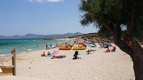 http://www.seemallorca.com/beaches/son-baulo-beach-ca'n-picafort-686048
