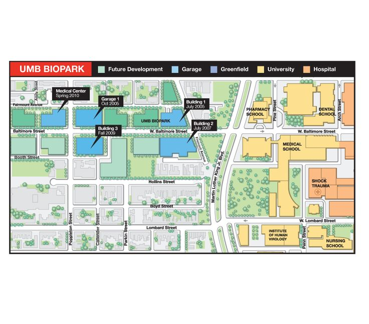 College Campus Map Illustration of University of Maryland BioPark