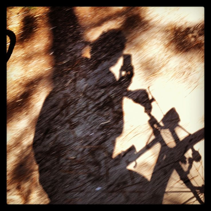 #pineta #romagna #bicycle #shadow