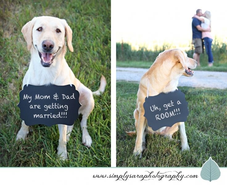 gay engagement photo ideas - 1000 Engagement Quotes on Pinterest
