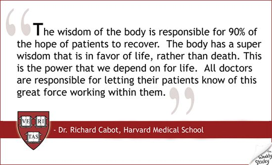 cabot pharmaceutical Cabot pharmaceuticals inc case solution, traces 12-year career of a pharmaceutical salesman, bob marsh, from recruitment to termination marsh had an uneven career.
