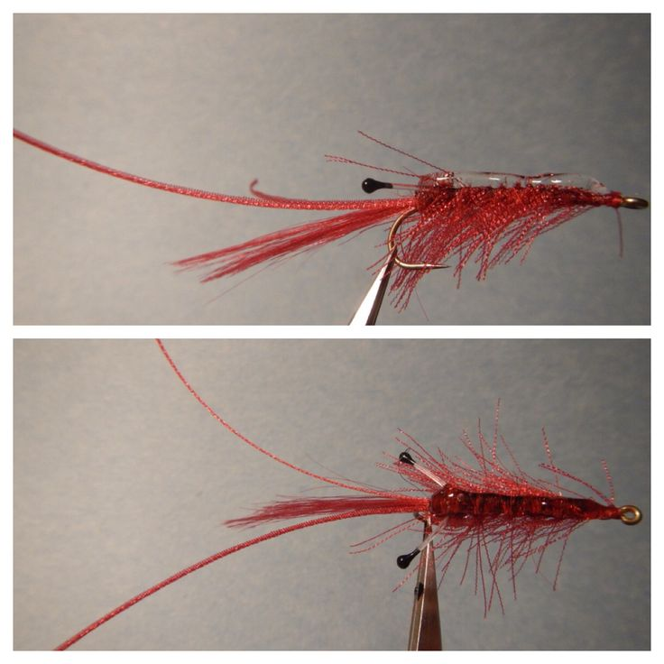 Ribbon shrimp flies for Fly fishing sale