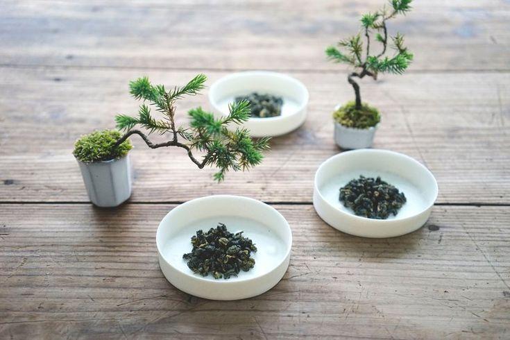 琅茶 Wolf Tea - 琅琅上口的好茶
