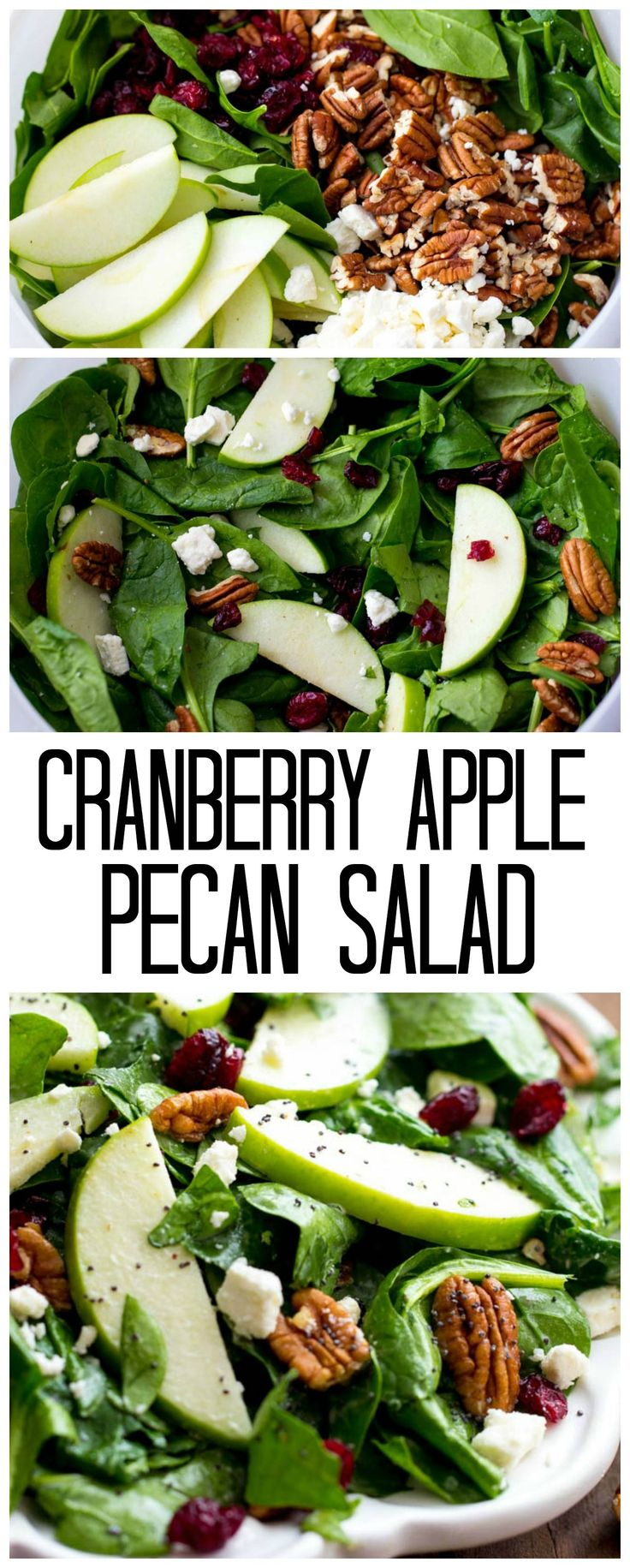 This Cranberry Apple Pecan Salad is perfect for the holidays and has so many amazing flavors! The creamy poppyseed dressing is the absolute best!