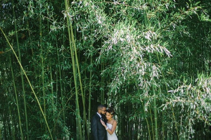 Today on Marry Me Ink is tattooed bride Kristy and Spiryt's elopement atVance Birthplace State Park, surrounded by close family and a gorgeous landscape of woodland and mountains. They both …