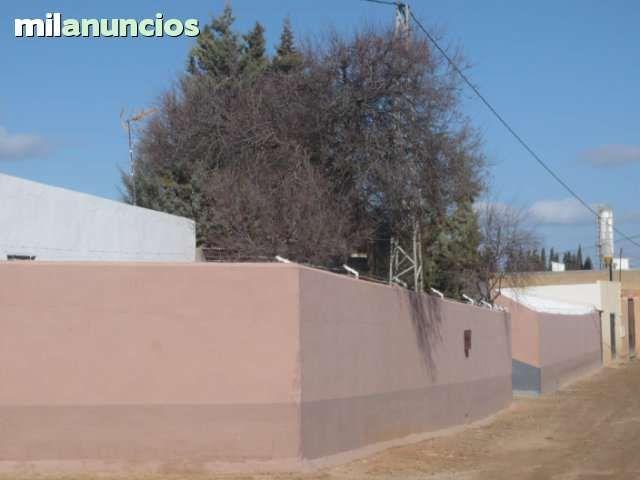 VENTA DE FINCA RUSTICA Y VIVIENDA - CAMPILLOS - MALAGA - ANDALUCIA - ESPAÑA -  - 1300 M2 - TELEFONO : +34 610636691