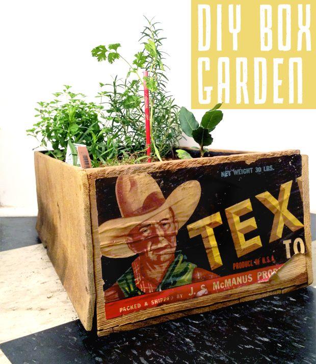 PEARL + EARL: DIY Box Garden: Gardens Boxes, Boxes Planters, Boxes Gardens, Diy'S Boxes, Wooden Boxes, Wine Boxes, Gardens Design, Diy'S Gardens, Portable Boxes