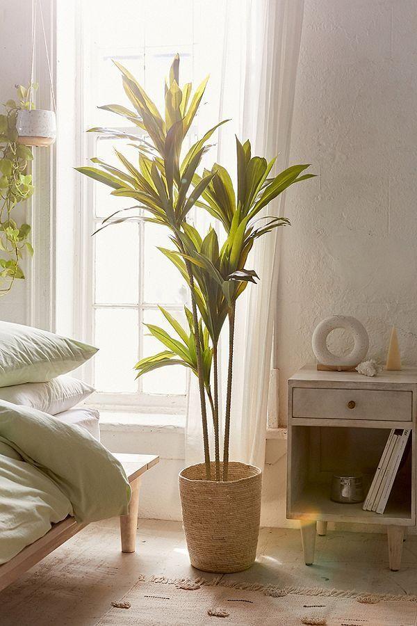 Dracena 5 Potted Faux Tree Plant Decor Faux Plants Decor Decor