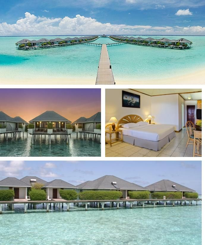 At this stunning #Resort & #Spa, #corporate #travel is #reinterpreted with a #tropical #twist. When it's time to #get #down to #business, you'll find their #Maldives #meeting #facilities are equipped with state-of-the-art #technology.  #Accommodation #set on #stilts above the #tranquil #turquoise #lagoon, our Maldives water bungalows truly embrace the island atmosphere of this Resort & Spa . Contact: penny@beds4business.co.za (REF: SIRM)