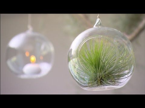 Graham Ross: Bringing the Outdoors In, Ep 24 (11.07.14)