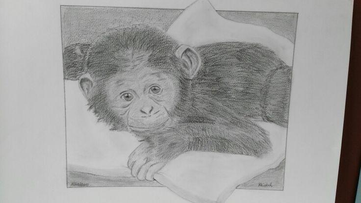 Baby chimpansee - potlood - poging tot...
