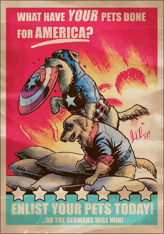 Captain America dog propaganda