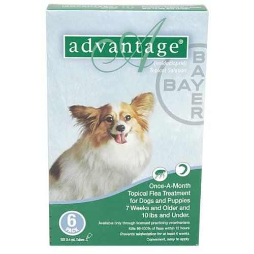 Advantage - Green Box for Dogs 0-10 pounds - 6 pack >>> Wow! I love this. Check it out now! : Flea and Tick Control