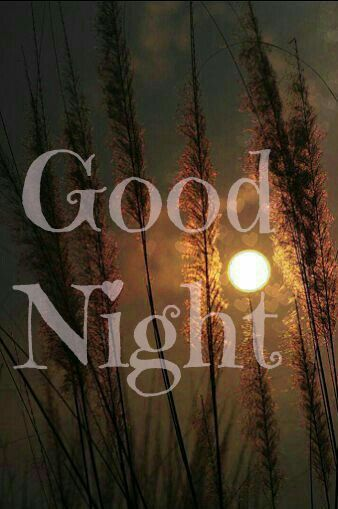 Good night beautiful!! Sleep well and sweet dreams!!! Be safe on your drive tomorrow!! Talk soon and LAB!